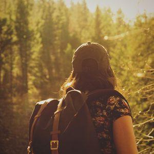 Trilhe o caminho da sabedoria